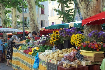 Wine and Food Market in Provonce, France