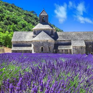 Visit Provence in France – Wine and Luxury Travel Beyond the Vine