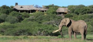 luxury-lodges-camps-ol-donyo-lodge-300x138