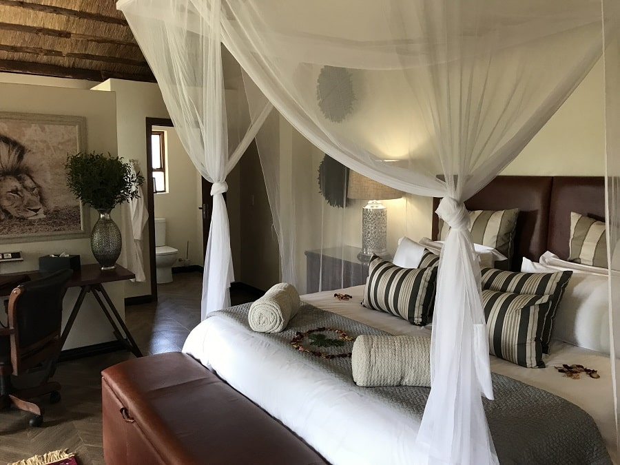Picture of a luxury camp and ecolodge in South Africa