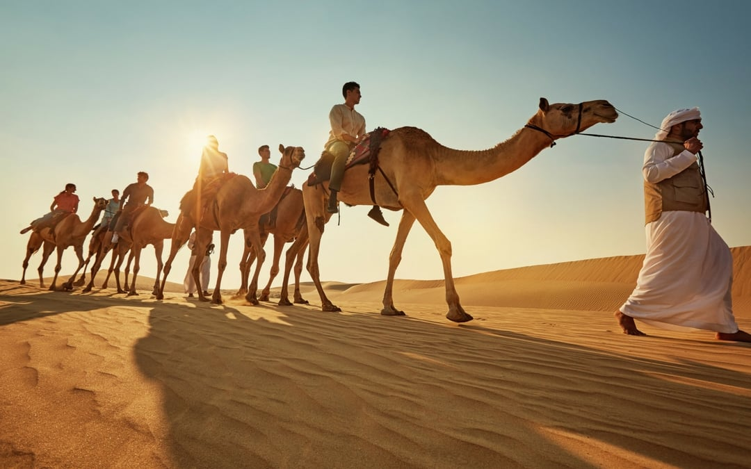 camel ride in the desert in Abu Dhabi, vacation in Abu Dhabi