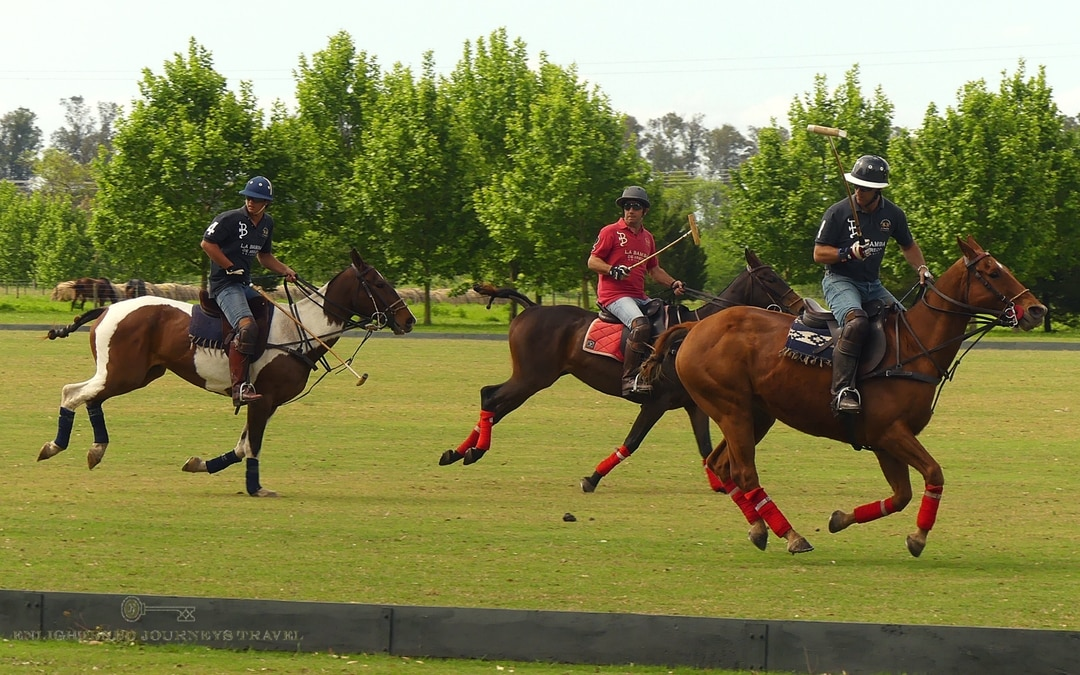 polo players in a polo match, Argentina travel guide