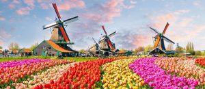 """Bike Route in the Netherlands – """"Bloemenroute"""" by Bollenstreek"""