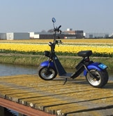 """moped at the Bike Route in the Netherlands - """"Bloemenroute"""" by Bollenstree"""