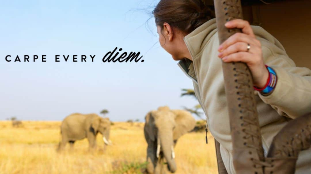 woman on her wildlife safari, carpe every diem, An ENLIGHTENED Journey Starts with Extraordinary Planning - How to Turn Your Bucket List into a Travel PLAN